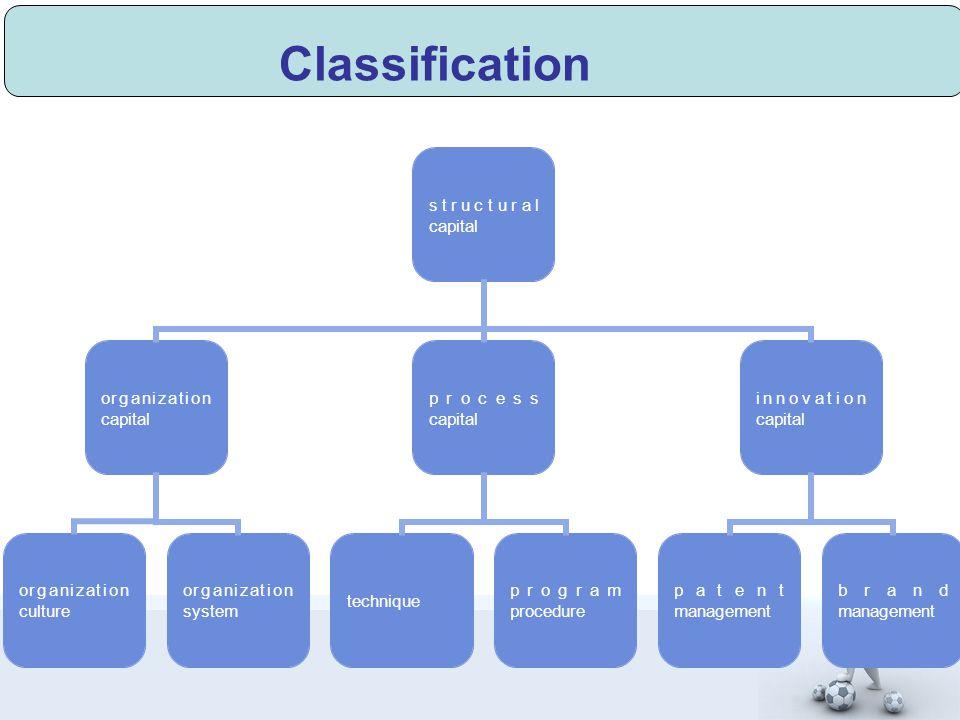 Classification structural capital organization capital organization culture organization system process capital technique program procedure innovation