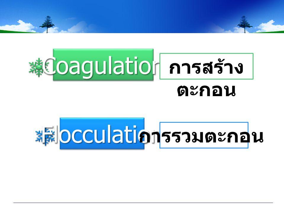 CoagulationCoagulation FlocculationFlocculation การสร้าง ตะกอน การรวมตะกอน