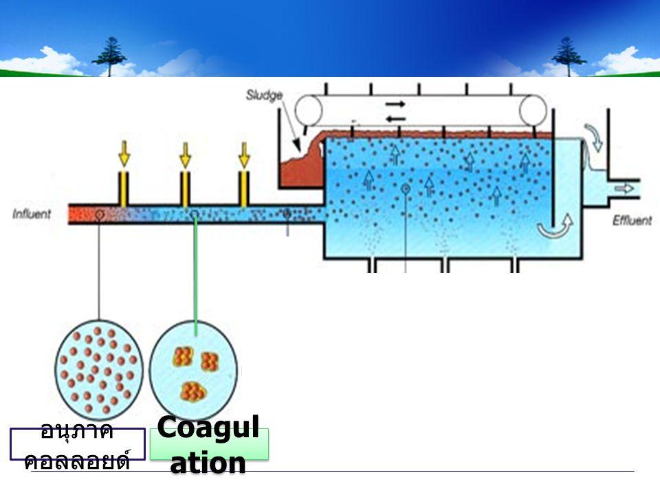 Coagul ation อนุภาค คอลลอยด์