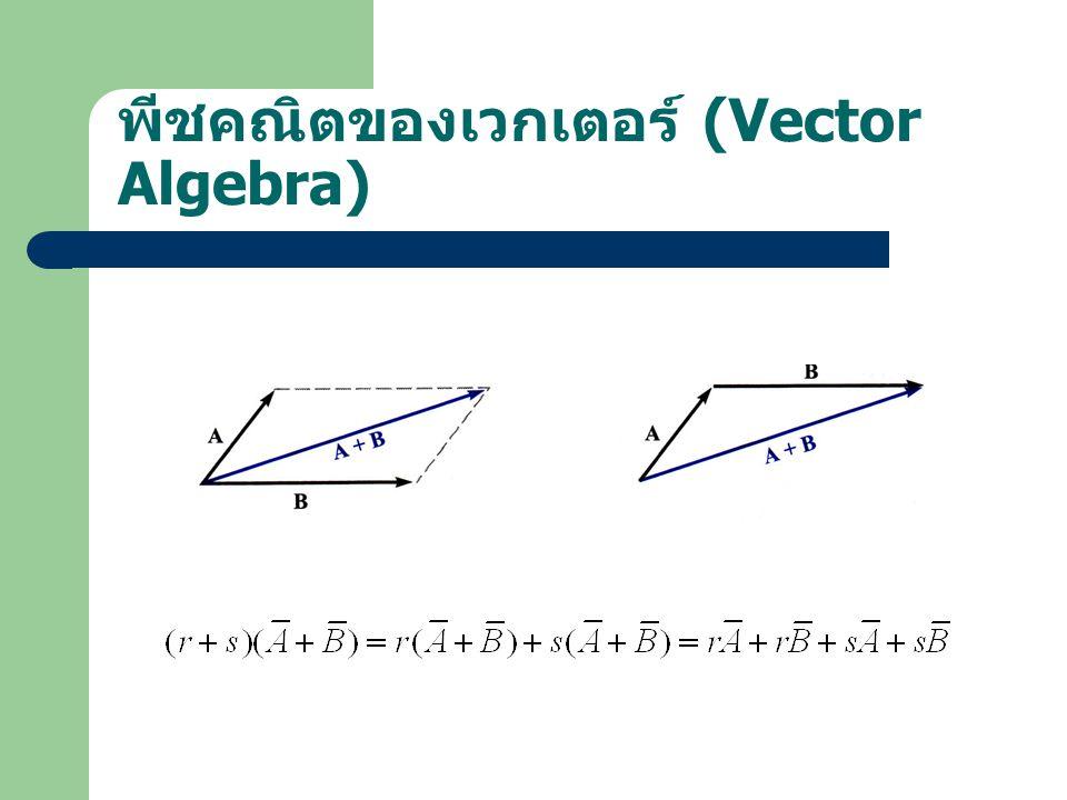 พีชคณิตของเวกเตอร์ (Vector Algebra)