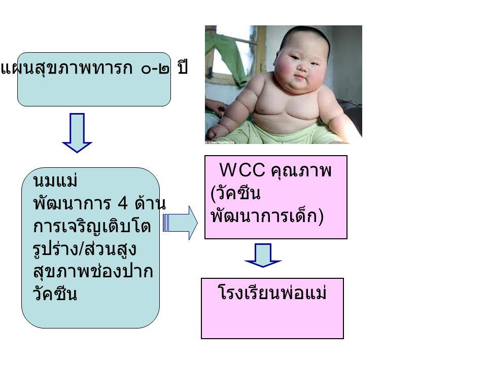นมแม่ พัฒนาการ 4 ด้าน การเจริญเติบโต รูปร่าง / ส่วนสูง สุขภาพช่องปาก วัคซีน แผนสุขภาพทารก ๐ - ๒ ปี WCC คุณภาพ ( วัคซีน พัฒนาการเด็ก ) โรงเรียนพ่อแม่