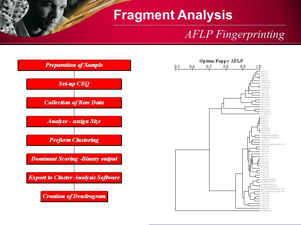 AFLP Fingerprinting Fragment Analysis
