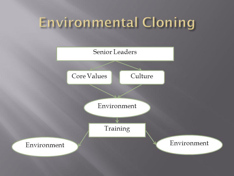 Senior Leaders Core ValuesCulture Training Environment