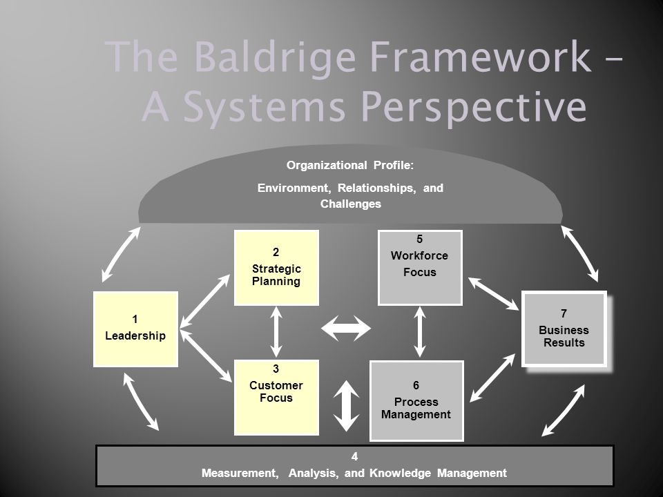 The Baldrige Framework – A Systems Perspective 4 Measurement, Analysis, and Knowledge Management 5 Workforce Focus 3 Customer Focus 7 Business Results 7 Business Results 2 Strategic Planning 1 Leadership 6 Process Management Organizational Profile: Environment, Relationships, and Challenges