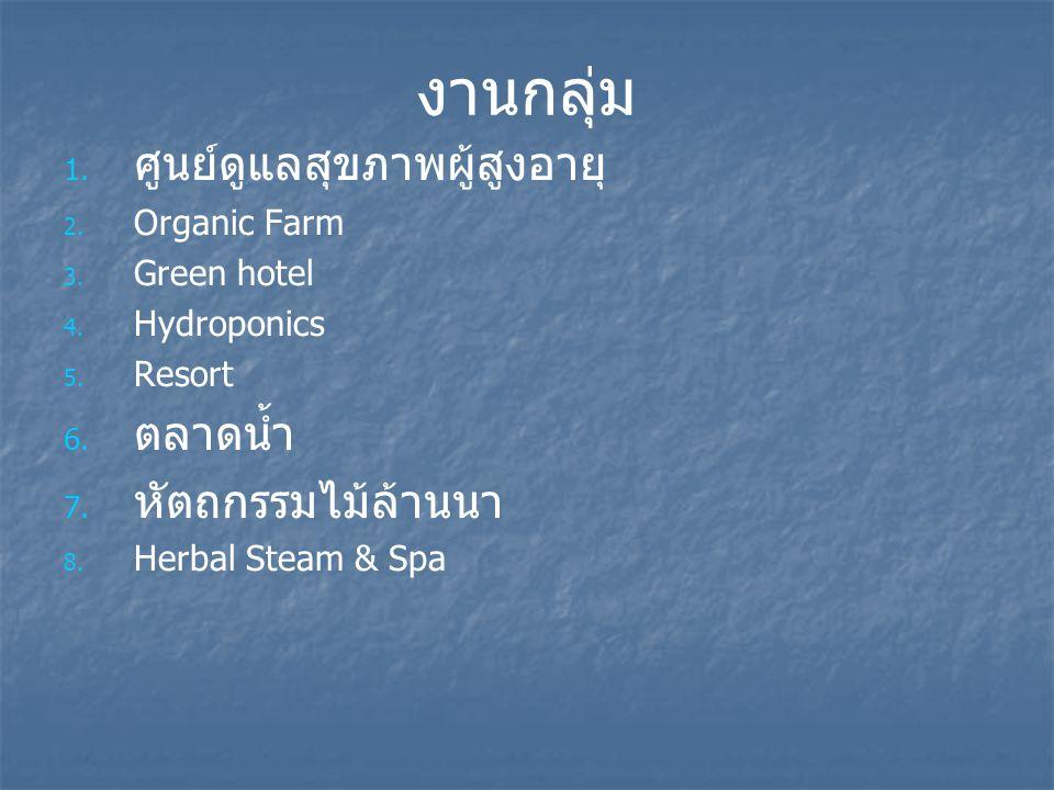 งานกลุ่ม 1. 1. ศูนย์ดูแลสุขภาพผู้สูงอายุ 2. 2. Organic Farm 3. 3. Green hotel 4. 4. Hydroponics 5. 5. Resort 6. 6. ตลาดน้ำ 7. 7. หัตถกรรมไม้ล้านนา 8.