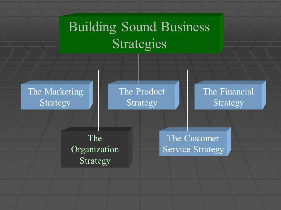 Building Sound Business Strategies The Marketing Strategy The Organization Strategy The Customer Service Strategy The Financial Strategy The Product Strategy