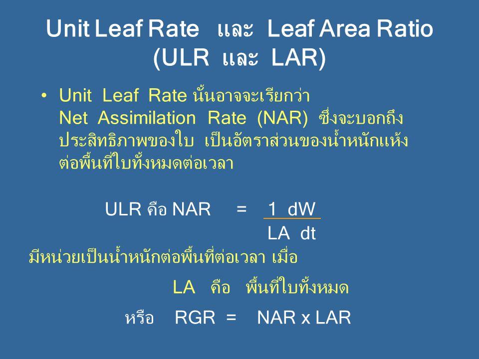 Unit Leaf Rate และ Leaf Area Ratio (ULR และ LAR) Unit Leaf Rate นั้นอาจจะเรียกว่า Net Assimilation Rate (NAR) ซึ่งจะบอกถึง ประสิทธิภาพของใบ เป็นอัตราส่วนของน้ำหนักแห้ง ต่อพื้นที่ใบทั้งหมดต่อเวลา ULR คือ NAR = 1 dW LA dt มีหน่วยเป็นน้ำหนักต่อพื้นที่ต่อเวลา เมื่อ LA คือ พื้นที่ใบทั้งหมด หรือ RGR = NAR x LAR