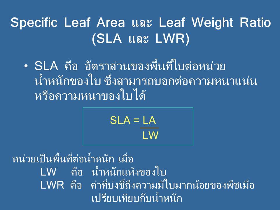 Specific Leaf Area และ Leaf Weight Ratio (SLA และ LWR) SLA คือ อัตราส่วนของพื้นที่ใบต่อหน่วย น้ำหนักของใบ ซึ่งสามารถบอกต่อความหนาแน่น หรือความหนาของใบได้ หน่วยเป็นพื้นที่ต่อน้ำหนัก เมื่อ LW คือ น้ำหนักแห้งของใบ LWR คือ ค่าที่บ่งชี้ถึงความมีใบมากน้อยของพืชเมื่อ เปรียบเทียบกับน้ำหนัก SLA = LA LW