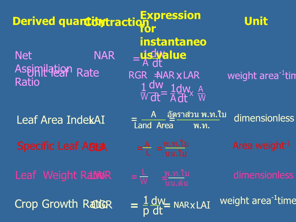 Leaf Area IndexLAI dimensionless A Land Area = พ.ท.พ.ท. อัตราส่วน พ. ท. ใบ = Area weight -1 Specific Leaf Area SLA A L = พ. ท. ใบ นน. ใบ = = L W Leaf