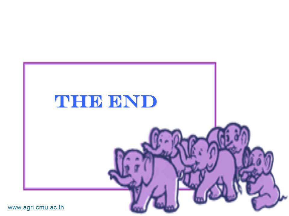 The End www.agri.cmu.ac.th