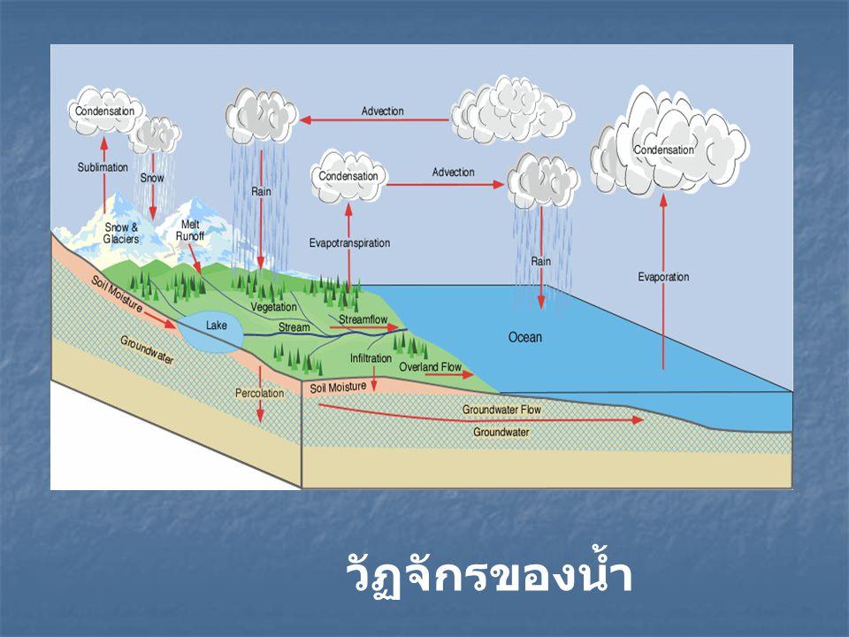 การสูญเสียน้ำ (Water loss) น้ำที่ไหลบ่าบนดิน (Surface runoff) น้ำซึมลงไปข้างล่าง (Percolation) การระเหย (Evaporation) การคายน้ำของพืช (Transpiration) การเก็บกักน้ำ (Water Storage) การเปลี่ยนแปลง ความชื้นในดิน Interception Storage การเก็บกักน้ำที่ผิวดิน