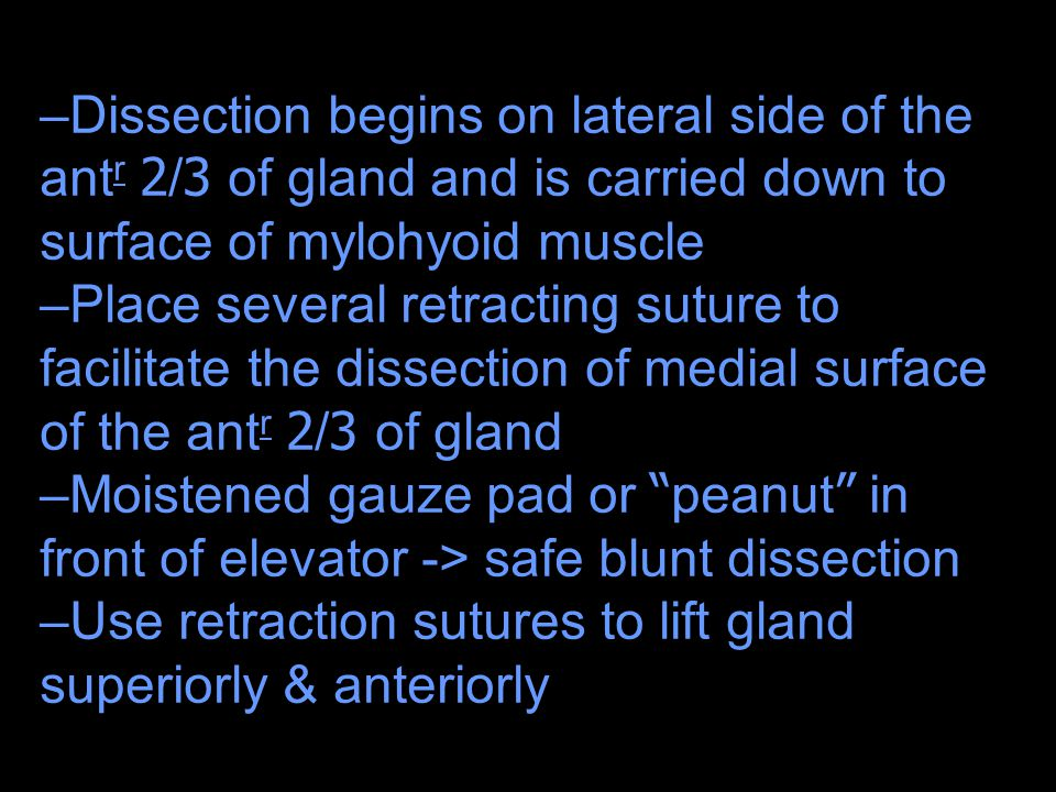 –Dissection begins on lateral side of the ant r 2/3 of gland and is carried down to surface of mylohyoid muscle –Place several retracting suture to fa