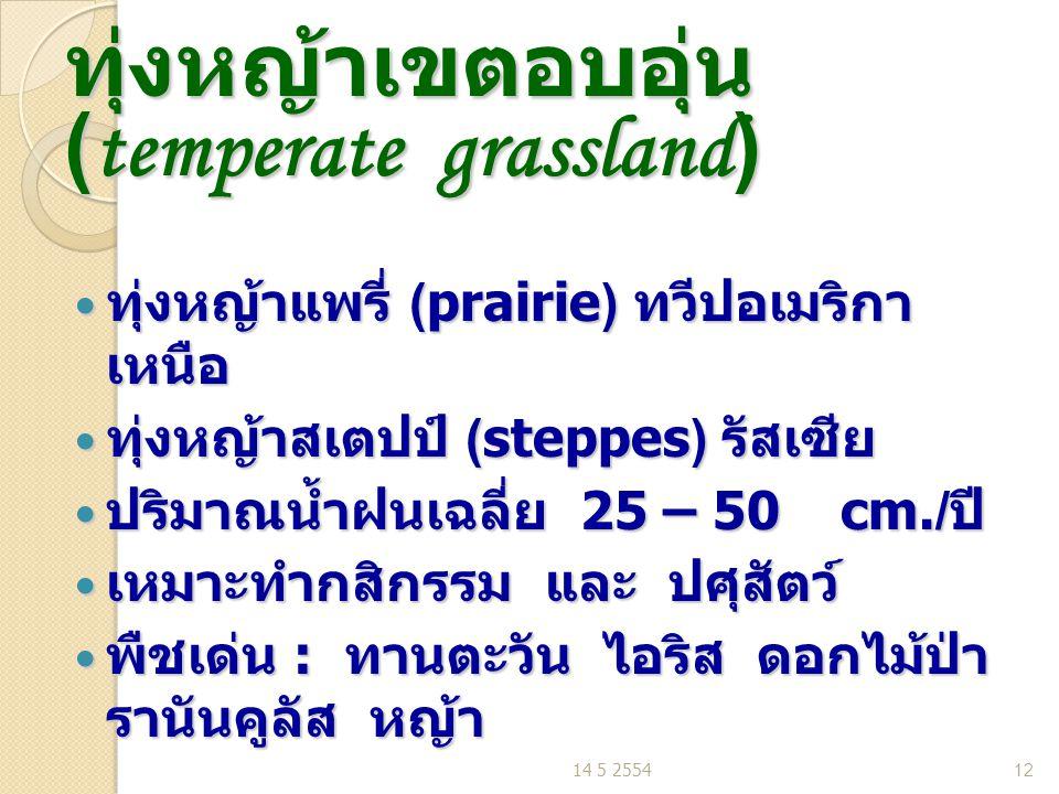 ทุ่งหญ้าเขตอบอุ่น (temperate grassland) ทุ่งหญ้าแพรี่ (prairie) ทวีปอเมริกา เหนือ ทุ่งหญ้าแพรี่ (prairie) ทวีปอเมริกา เหนือ ทุ่งหญ้าสเตปป์ (steppes) รัสเซีย ทุ่งหญ้าสเตปป์ (steppes) รัสเซีย ปริมาณน้ำฝนเฉลี่ย 25 – 50 cm./ ปี ปริมาณน้ำฝนเฉลี่ย 25 – 50 cm./ ปี เหมาะทำกสิกรรม และ ปศุสัตว์ เหมาะทำกสิกรรม และ ปศุสัตว์ พืชเด่น : ทานตะวัน ไอริส ดอกไม้ป่า รานันคูลัส หญ้า พืชเด่น : ทานตะวัน ไอริส ดอกไม้ป่า รานันคูลัส หญ้า 14 5 255412