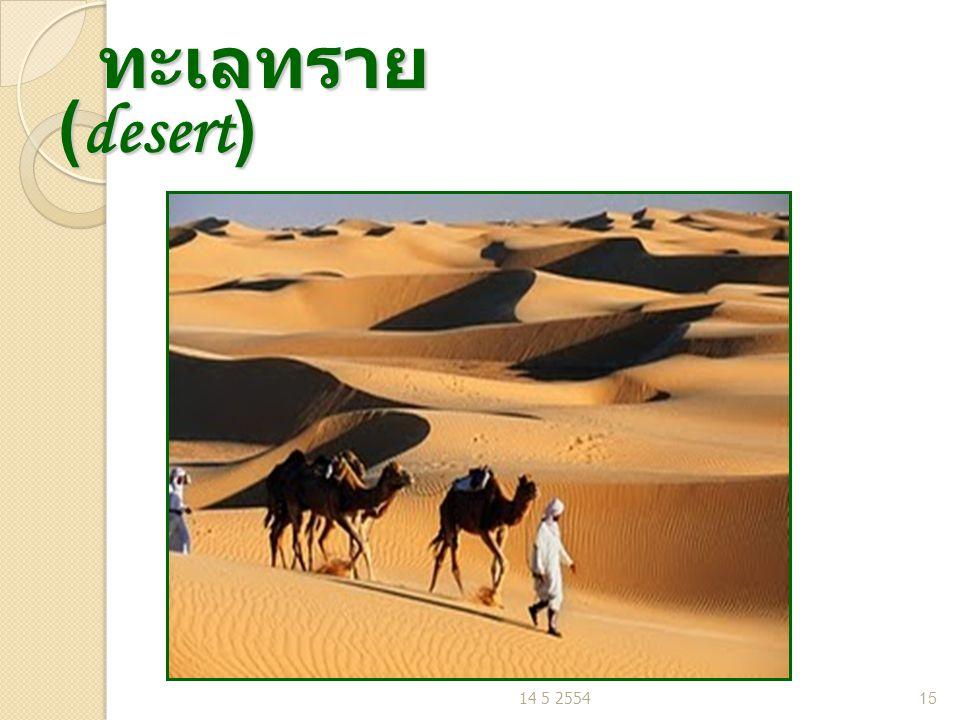 ทะเลทราย (desert) ทะเลทราย (desert) 14 5 255415