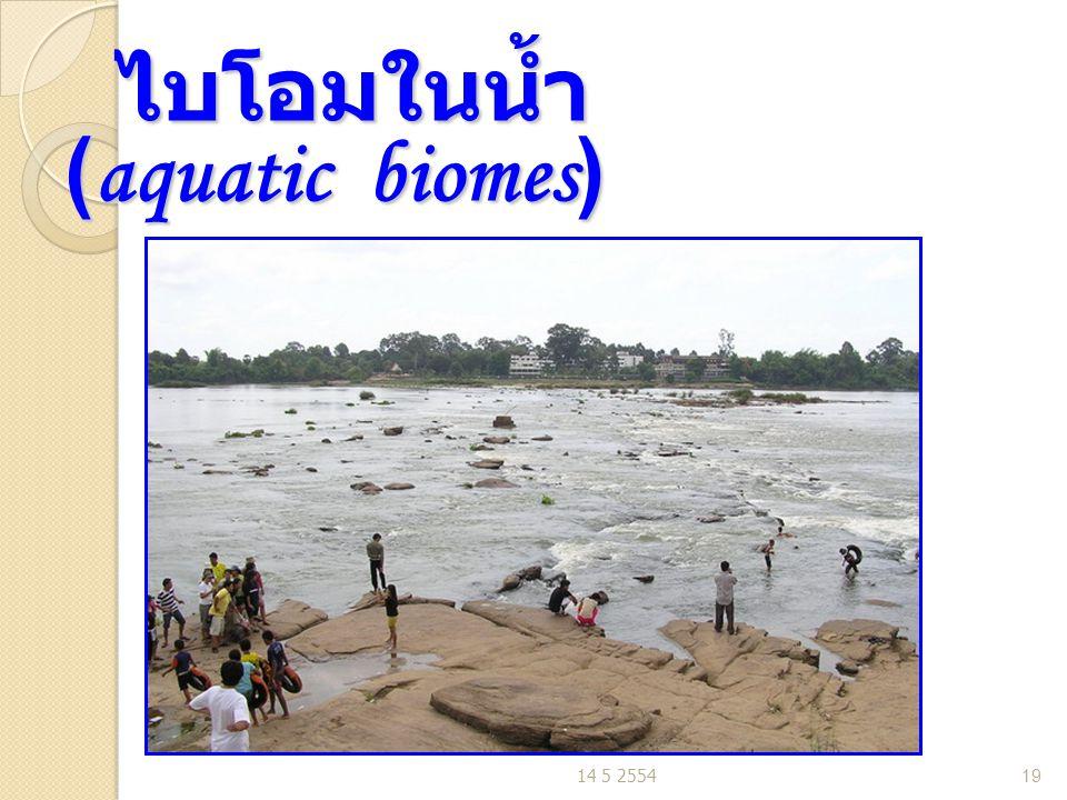 ไบโอมในน้ำ (aquatic biomes) ไบโอมในน้ำ (aquatic biomes) 14 5 255419