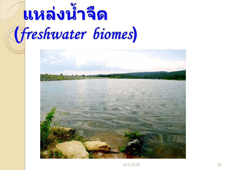 แหล่งน้ำจืด (freshwater biomes) แหล่งน้ำจืด (freshwater biomes) 14 5 255420