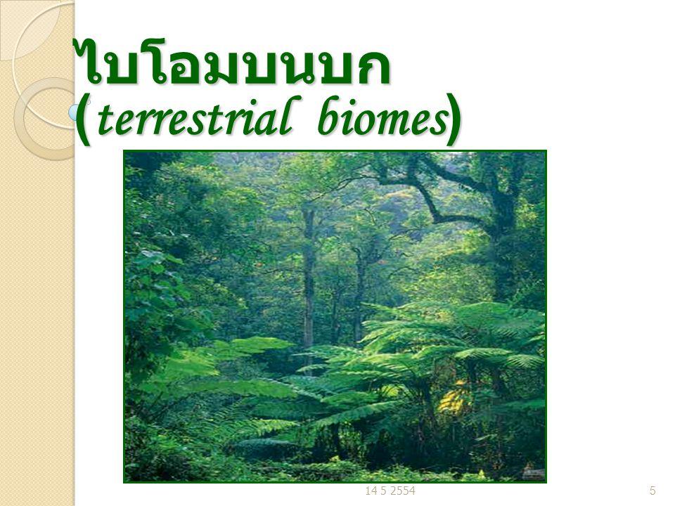 ทะเลทราย (desert) พื้นที่ที่มีปริมาณน้ำฝนเฉลี่ยน้อยกว่า 25 cm./ ปี พื้นที่ที่มีปริมาณน้ำฝนเฉลี่ยน้อยกว่า 25 cm./ ปี ทะเลทรายซาฮารา (Sahara) ในทวีป แอฟริกา ทะเลทรายโกบี (Gobi) ใน จีน ทะเลทรายโมฮาวี (Mojave) ใน รัฐแคริฟอร์เนีย U.S.A ทะเลทรายซาฮารา (Sahara) ในทวีป แอฟริกา ทะเลทรายโกบี (Gobi) ใน จีน ทะเลทรายโมฮาวี (Mojave) ใน รัฐแคริฟอร์เนีย U.S.A พืชเด่น : กระบองเพชร อินทผาลัม พืชเด่น : กระบองเพชร อินทผาลัม 14 5 255416