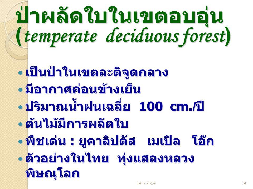 ป่าผลัดใบในเขตอบอุ่น (temperate deciduous forest) เป็นป่าในเขตละติจูดกลาง เป็นป่าในเขตละติจูดกลาง มีอากาศค่อนข้างเย็น มีอากาศค่อนข้างเย็น ปริมาณน้ำฝนเฉลี่ย 100 cm./ ปี ปริมาณน้ำฝนเฉลี่ย 100 cm./ ปี ต้นไม้มีการผลัดใบ ต้นไม้มีการผลัดใบ พืชเด่น : ยูคาลิปตัส เมเปิล โอ๊ก พืชเด่น : ยูคาลิปตัส เมเปิล โอ๊ก ตัวอย่างในไทย ทุ่งแสลงหลวง พิษณุโลก ตัวอย่างในไทย ทุ่งแสลงหลวง พิษณุโลก 14 5 25549