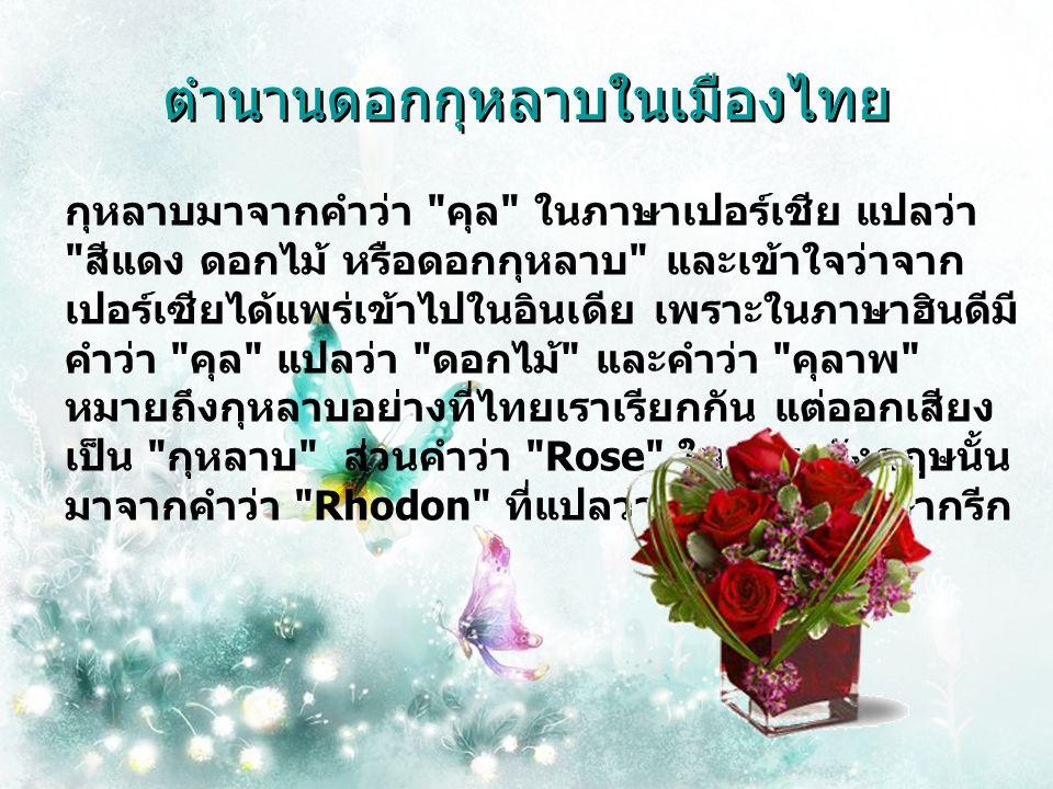 ตำนานดอก กุหลาบ ในเมืองไทย