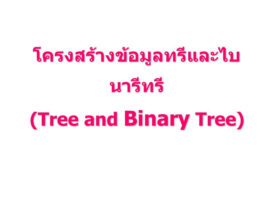 โครงสร้างข้อมูลทรีและไบ นารีทรี (Tree and Binary Tree)