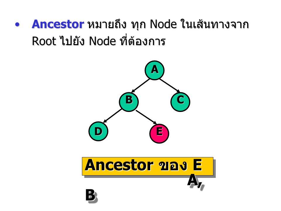 Ancestor หมายถึง ทุก Node ในเส้นทางจาก Root ไปยัง Node ที่ต้องการAncestor หมายถึง ทุก Node ในเส้นทางจาก Root ไปยัง Node ที่ต้องการ A BC DE Ancestor ขอ