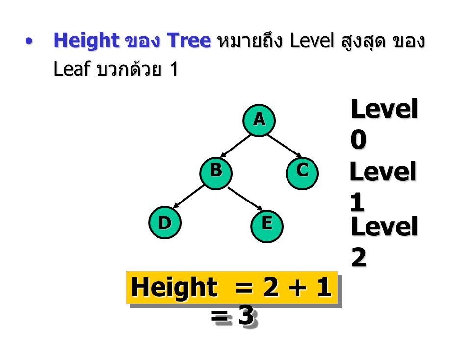 Height ของ Tree หมายถึง Level สูงสุด ของ Leaf บวกด้วย 1Height ของ Tree หมายถึง Level สูงสุด ของ Leaf บวกด้วย 1 Level 0 A BC DE Level 1 Level 2 Height
