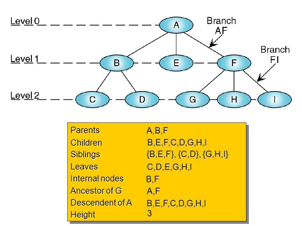 ParentsChildrenSiblingsLeaves Internal nodes Ancestor of G Descendent of A HeightParentsChildrenSiblingsLeaves Internal nodes Ancestor of G Descendent
