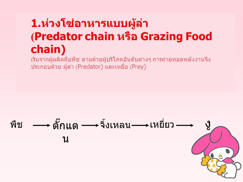 1. ห่วงโซ่อาหารแบบผู้ล่า (Predator chain หรือ Grazing Food chain) เริ่มจากผู้ผลิตคือพืช ตามด้วยผู้บริโภคอันดับต่างๆ การถ่ายทอดพลังงานจึง ประกอบด้วย ผู