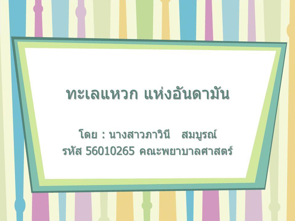 ทะเลแหวก แห่งอันดามัน โดย : นางสาวภาวินี สมบูรณ์ รหัส 56010265 คณะพยาบาลศาสตร์