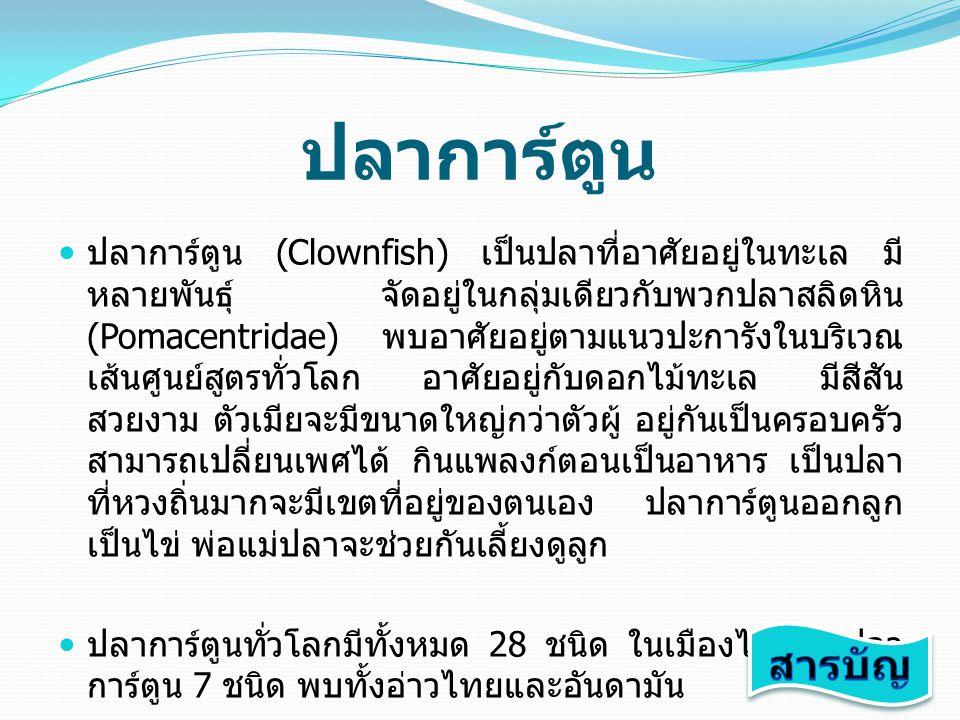 ปลาการ์ตูน ปลาการ์ตูน (Clownfish) เป็นปลาที่อาศัยอยู่ในทะเล มี หลายพันธุ์ จัดอยู่ในกลุ่มเดียวกับพวกปลาสลิดหิน (Pomacentridae) พบอาศัยอยู่ตามแนวปะการัง