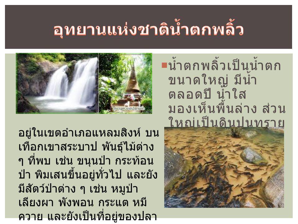  น้ำตกพลิ้วเป็นน้ำตก ขนาดใหญ่ มีน้ำ ตลอดปี น้ำใส มองเห็นพื้นล่าง ส่วน ใหญ่เป็นดินปนทราย อยู่ในเขตอำเภอแหลมสิงห์ บน เทือกเขาสระบาป พันธุ์ไม้ต่าง ๆ ที่พบ เช่น ขนุนป่า กระท้อน ป่า พิมเสนขึ้นอยู่ทั่วไป และยัง มีสัตว์ป่าต่าง ๆ เช่น หมูป่า เลียงผา พังพอน กระแต หมี ควาย และยังเป็นที่อยู่ของปลา นานาชนิด เช่น ปลาพลวง ปลา ดุก ปลาฉาก
