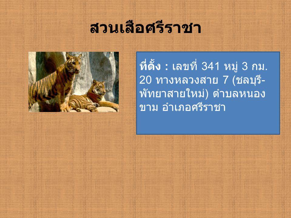 สวนเสือศรีราชา ที่ตั้ง : เลขที่ 341 หมู่ 3 กม. 20 ทางหลวงสาย 7 ( ชลบุรี - พัทยาสายใหม่ ) ตำบลหนอง ขาม อำเภอศรีราชา