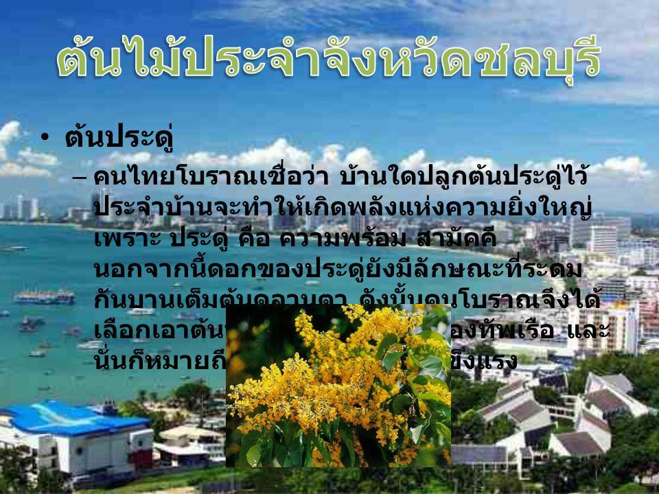 ต้นประดู่ – คนไทยโบราณเชื่อว่า บ้านใดปลูกต้นประดู่ไว้ ประจำบ้านจะทำให้เกิดพลังแห่งความยิ่งใหญ่ เพราะ ประดู่ คือ ความพร้อม สามัคคี นอกจากนี้ดอกของประดู