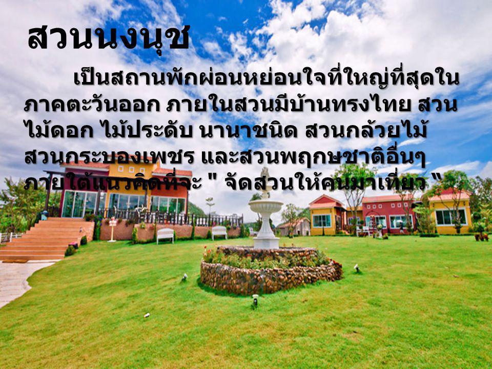 สวนนงนุช เป็นสถานพักผ่อนหย่อนใจที่ใหญ่ที่สุดใน ภาคตะวันออก ภายในสวนมีบ้านทรงไทย สวน ไม้ดอก ไม้ประดับ นานาชนิด สวนกล้วยไม้ สวนกระบองเพชร และสวนพฤกษชาติ