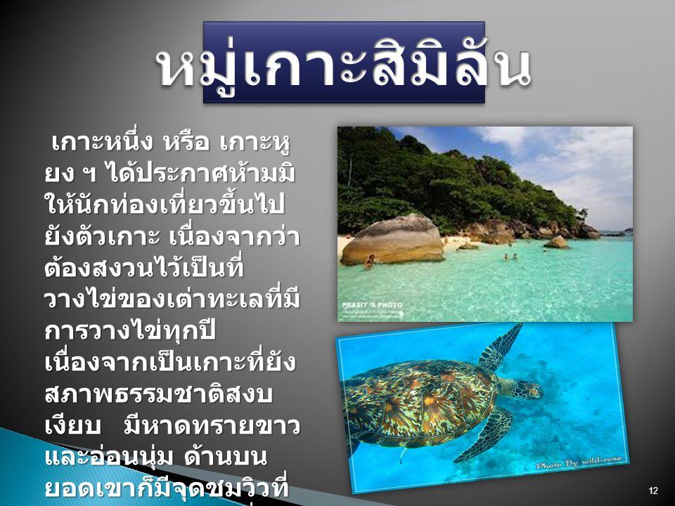 เกาะหนึ่ง หรือ เกาะหู ยง ฯ ได้ประกาศห้ามมิ ให้นักท่องเที่ยวขึ้นไป ยังตัวเกาะ เนื่องจากว่า ต้องสงวนไว้เป็นที่ วางไข่ของเต่าทะเลที่มี การวางไข่ทุกปี เนื