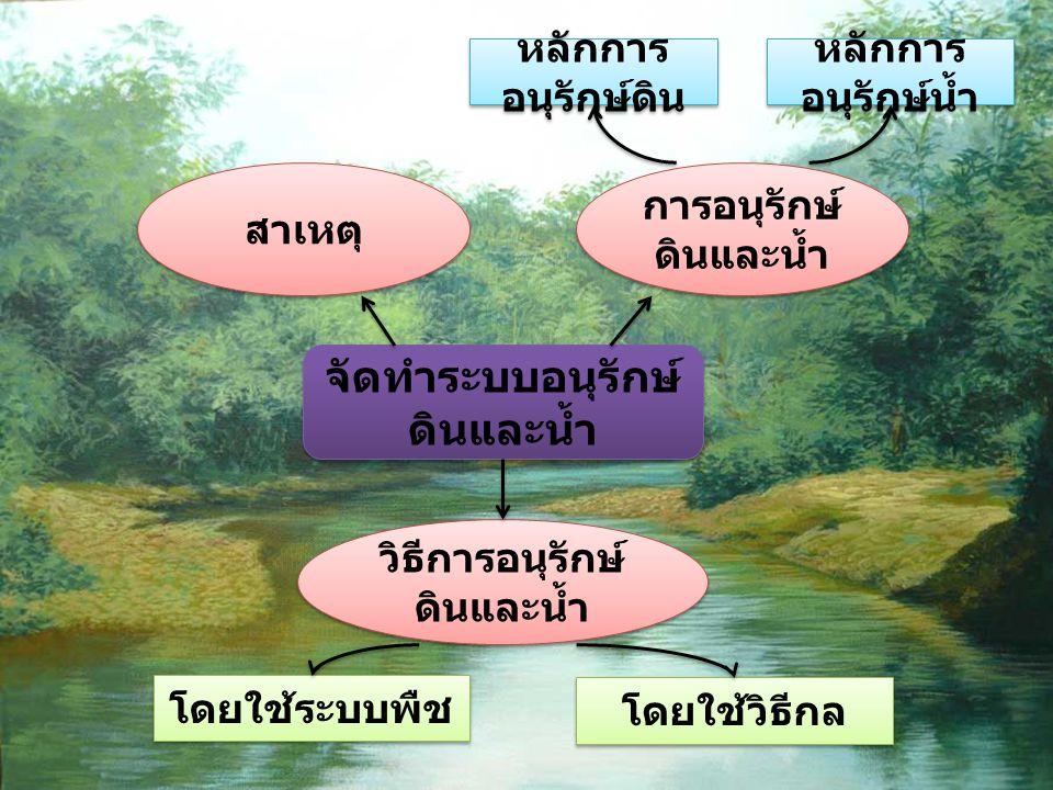 จัดทำระบบอนุรักษ์ ดินและน้ำ การอนุรักษ์ ดินและน้ำ การอนุรักษ์ ดินและน้ำ วิธีการอนุรักษ์ ดินและน้ำ วิธีการอนุรักษ์ ดินและน้ำ หลักการ อนุรักษ์ดิน หลักกา