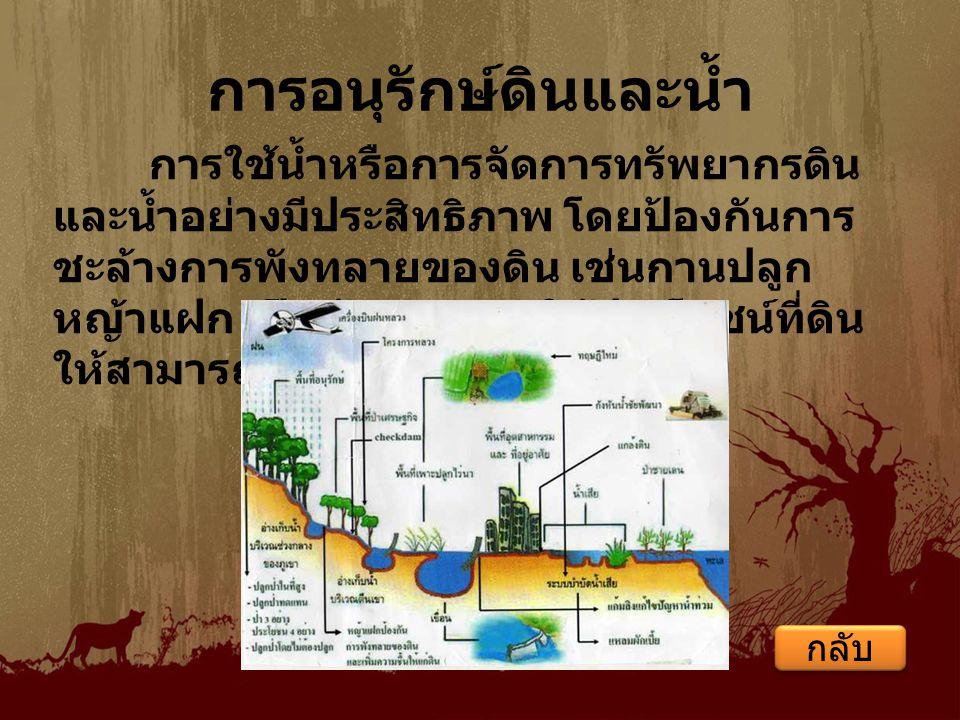 หลักการอนุรักษ์ดิน เพื่อรักษาความสามารถในการผลิตของดิน ให้ยืนนานและเพิ่มผลผลิตต่อหน่วยเนื้อที่ดิน