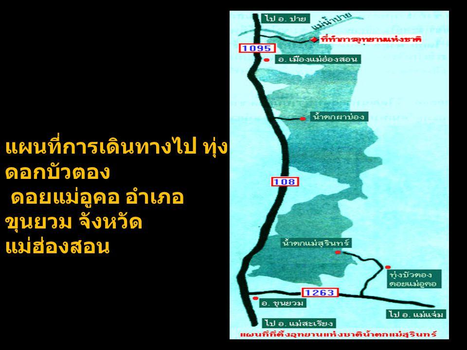 แผนที่การเดินทางไป ทุ่ง ดอกบัวตอง ดอยแม่อูคอ อำเภอ ขุนยวม จังหวัด แม่ฮ่องสอน