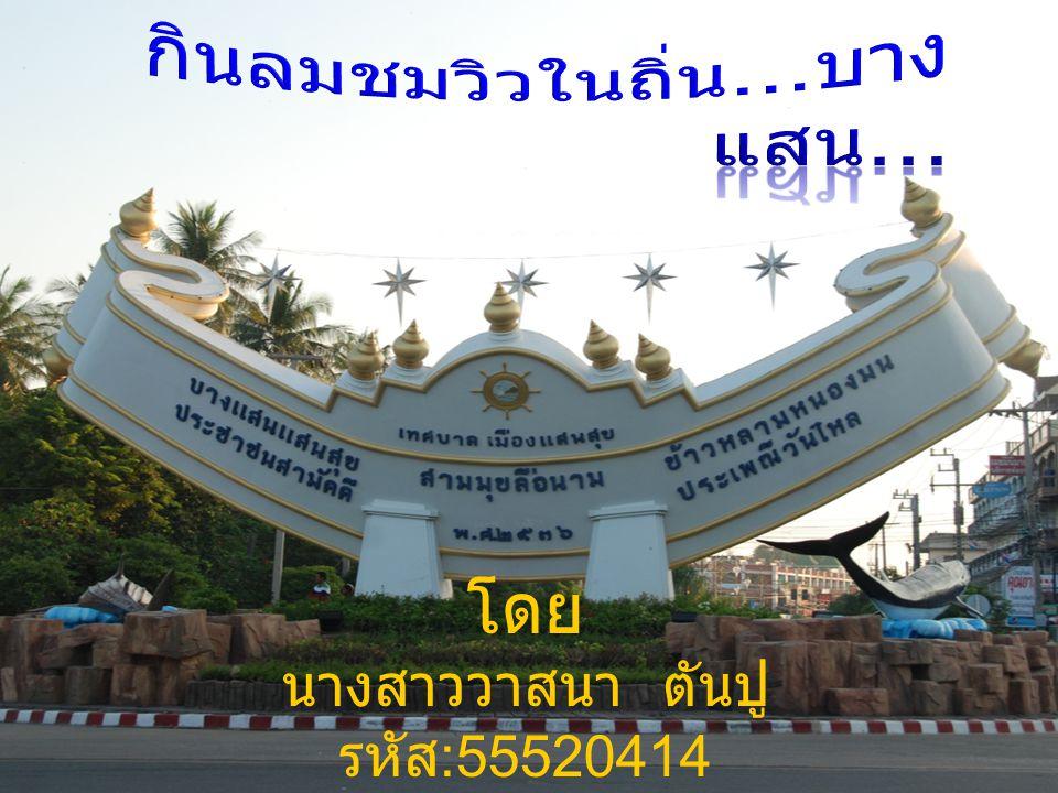 โดย นางสาววาสนา ตันปู รหัส :55520414