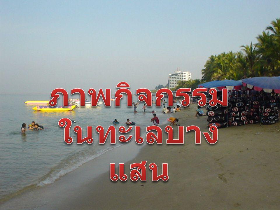 หาดวอนนภา เป็นชายหาดตอนใต้ของหาด บางแสน บริเวณวงเวียนบางแสนลงไปทางใต้ อีก 2 กม. มีบรรยากาศเงียบสงบกว่าหาดบาง แสน.