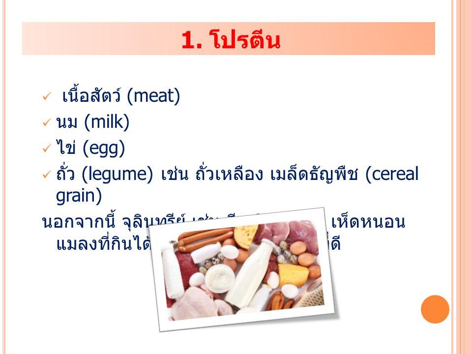 1. โปรตีน เนื้อสัตว์ (meat) นม (milk) ไข่ (egg) ถั่ว (legume) เช่น ถั่วเหลือง เมล็ดธัญพืช (cereal grain) นอกจากนี้ จุลินทรีย์ เช่น ยีสต์ สาหร่าย เห็ดห