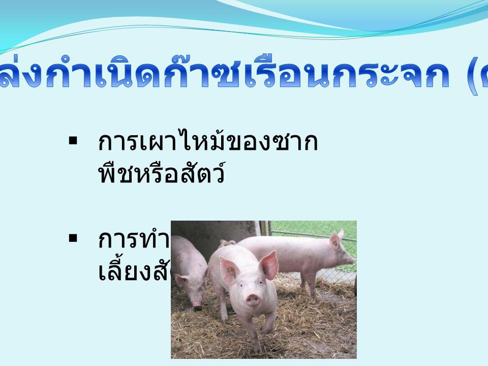  การเผาไหม้ของซาก พืชหรือสัตว์  การทำปศุสัตว์ การ เลี้ยงสัตว์ การทำฟาร์ม
