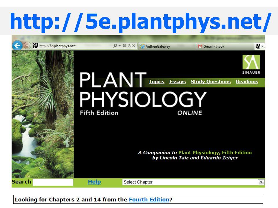 ตัวอย่าง : Temperature-dependent extracellular pH change of cells level of stress sensed by plant cells physiological:  25°C non-physiological: >45°C (Chaidee and Pfeiffer 2006) threshold