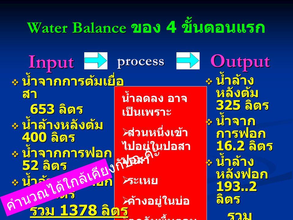 Water Balance Water Balance ของ 4 ขั้นตอนแรก Input Input  น้ำจากการต้มเยื่อ สา 653 ลิตร 653 ลิตร  น้ำล้างหลังต้ม 400 ลิตร  น้ำจากการฟอก 52 ลิตร  น