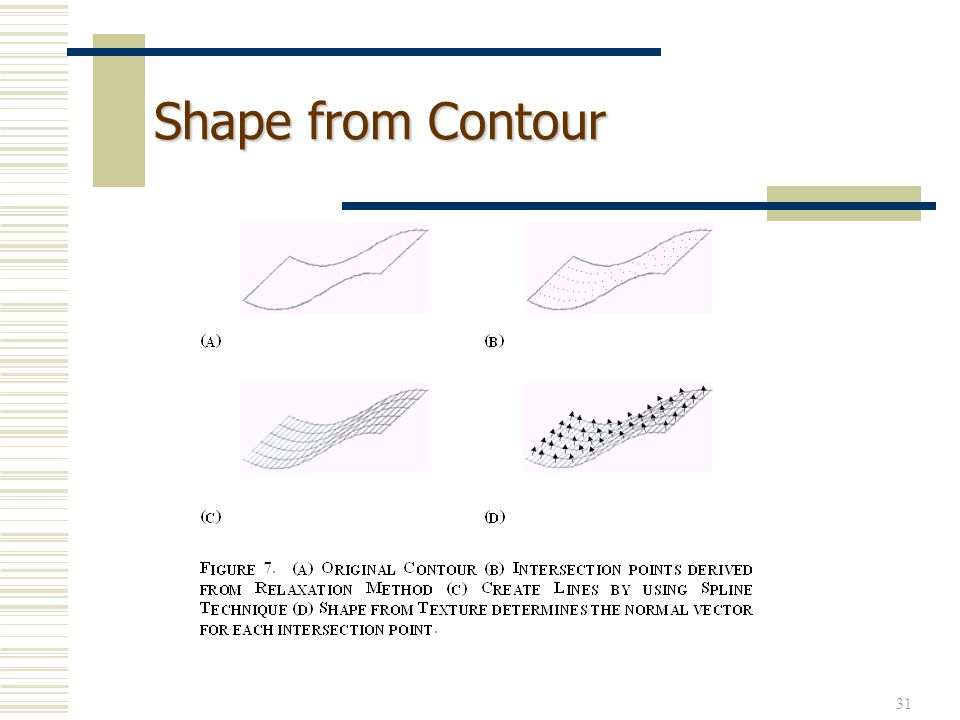 31 Shape from Contour