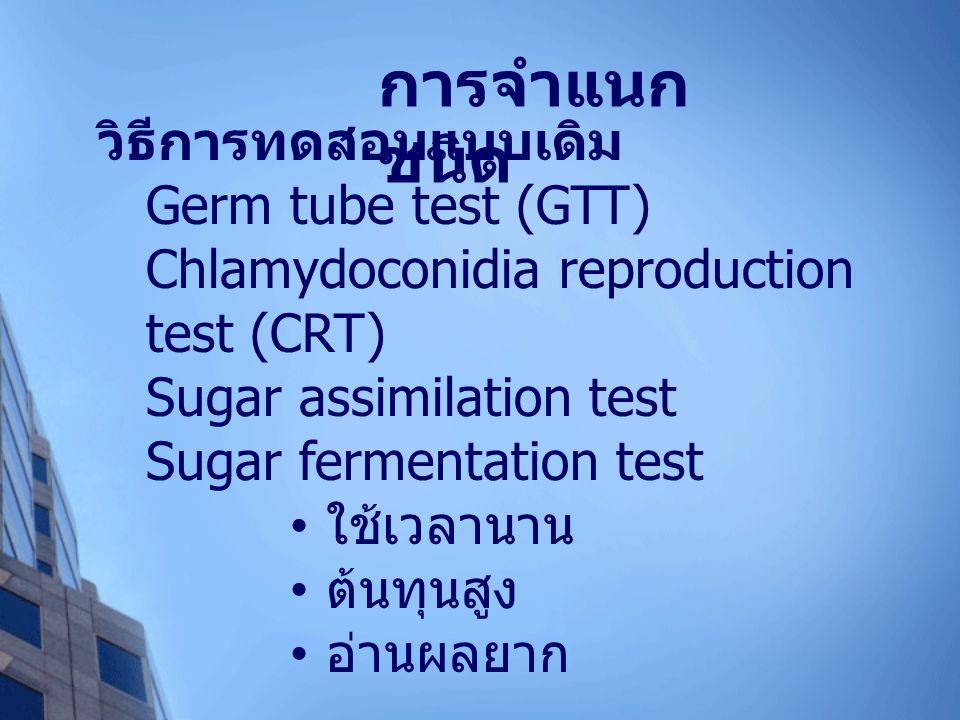 วิธีการทดสอบแบบเดิม Germ tube test (GTT) Chlamydoconidia reproduction test (CRT) Sugar assimilation test Sugar fermentation test ใช้เวลานาน ต้นทุนสูง อ่านผลยาก การจำแนก ชนิด