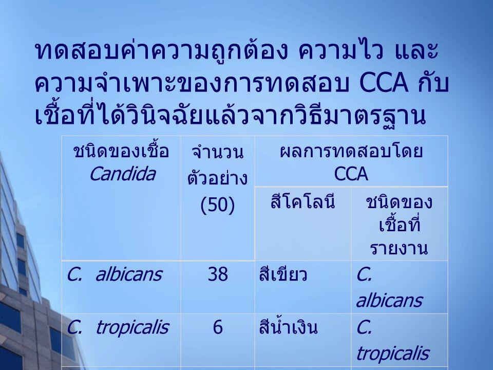 ทดสอบค่าความถูกต้อง ความไว และ ความจำเพาะของการทดสอบ CCA กับ เชื้อที่ได้วินิจฉัยแล้วจากวิธีมาตรฐาน ชนิดของเชื้อ Candida จำนวน ตัวอย่าง (50) ผลการทดสอบโดย CCA สีโคโลนีชนิดของ เชื้อที่ รายงาน C.