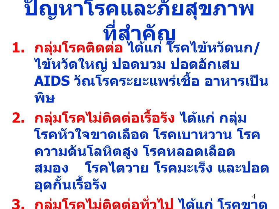 ปัญหาโรคและภัยสุขภาพ ที่สำคัญ 1. กลุ่มโรคติดต่อ ได้แก่ โรคไข้หวัดนก / ไข้หวัดใหญ่ ปอดบวม ปอดอักเสบ AIDS วัณโรคระยะแพร่เชื้อ อาหารเป็น พิษ 2. กลุ่มโรคไ