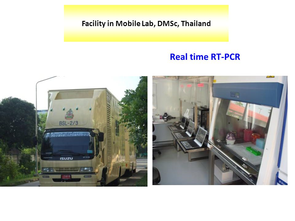 Real time RT-PCR Facility in Mobile Lab, DMSc, Thailand
