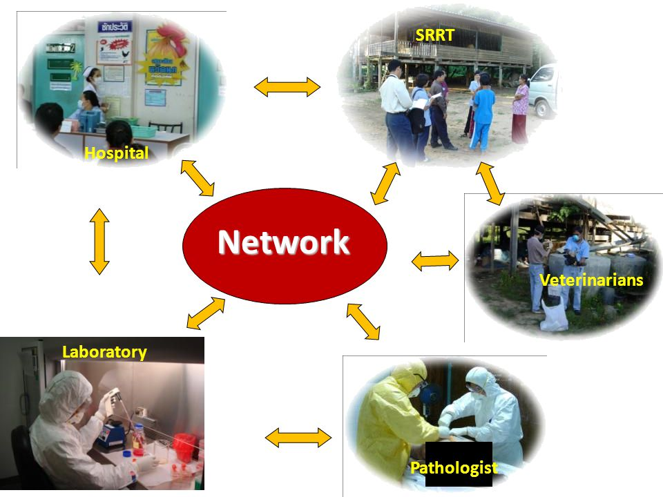 Network Hospital SRRT Laboratory Veterinarians Pathologist Laboratory